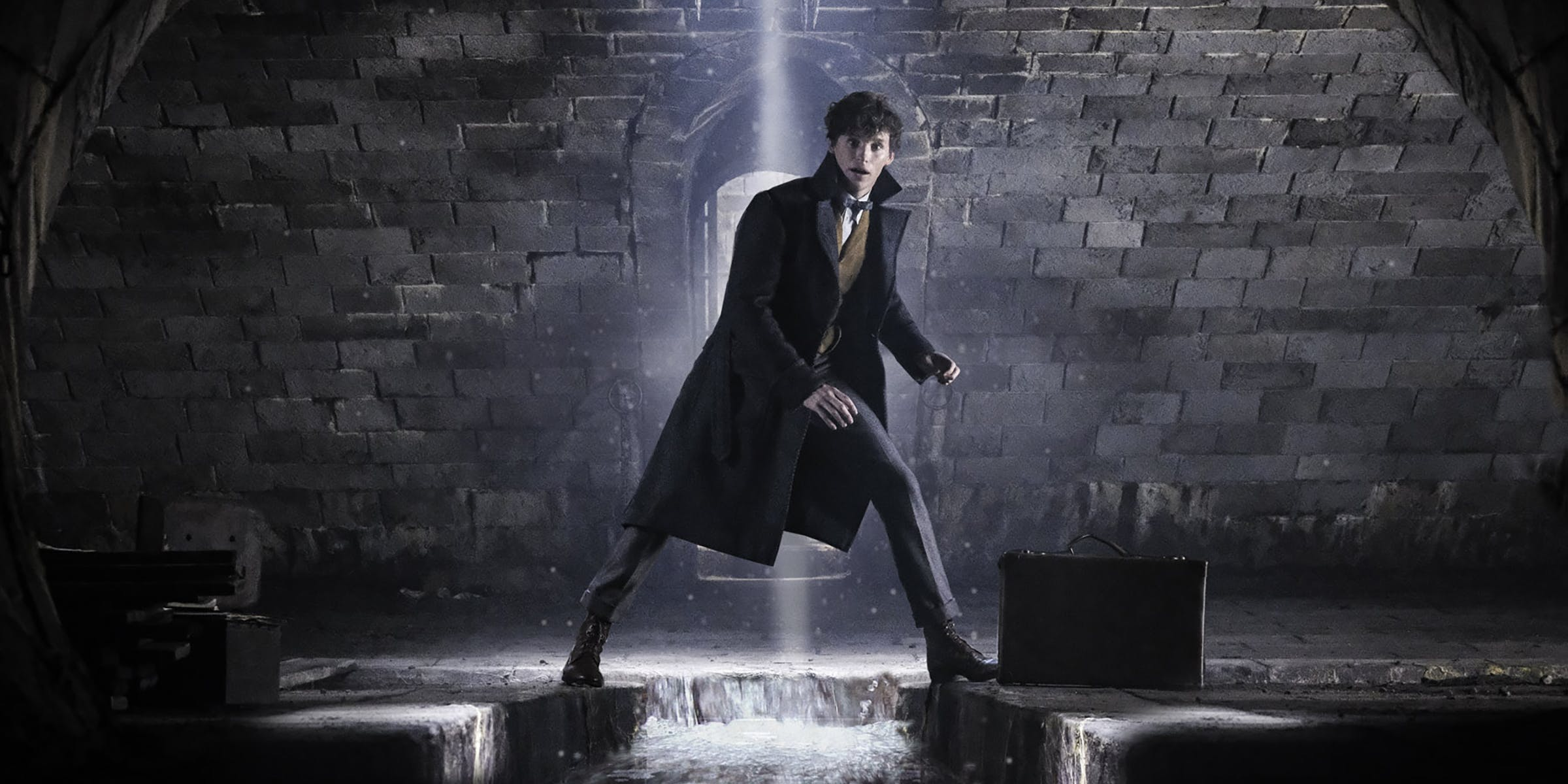 Fantastic Beasts 3 Expected To Feature More Hogwarts, Attempt To Bring Harry Potter Magic Back