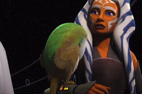 Will This Character Show Up With Ahsoka On The Mandalorian?